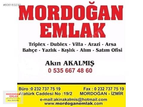 mordoğan emlak tan eğlenhocada 5200m2 zeytinlik...