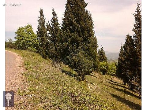 Karamürsel - Kızderbent'te 16.800 m2 Kelepir Tarla