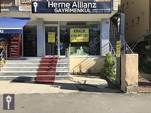Herne Allianz dan Akdeniz Caddesi Üzeri Kiralık...
