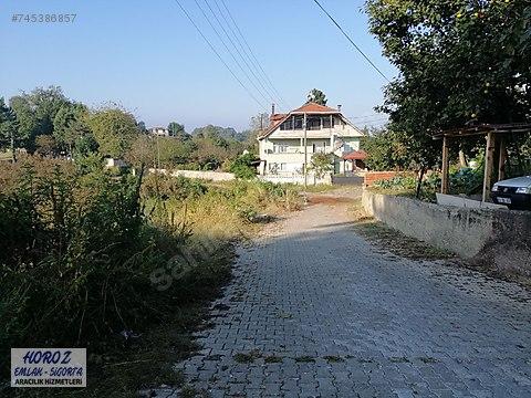 Akçakoca Doğancılar da 15 dönüm köy içinde fındıklık
