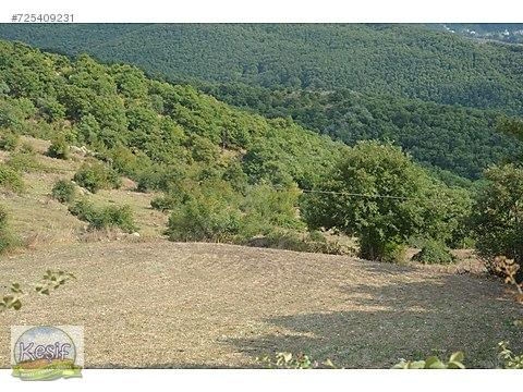 Gönen Balıkesir 1.276 m2 köyün dibinde arsa.