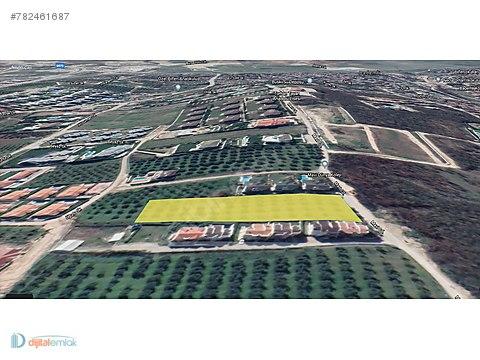 Mudanya Çağrışan'da Manzaralı 3.900 m2 Villa İmarlı...