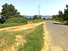 ORMAN-KÖY-ASFALT KENARI-MANZARALI 1300 m2-%8 İMARLI-elektrik var #214485665
