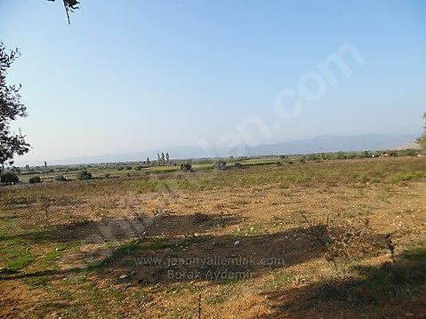 Tire Eskioba Köyünde 15.800 M2 Satılık Tarla