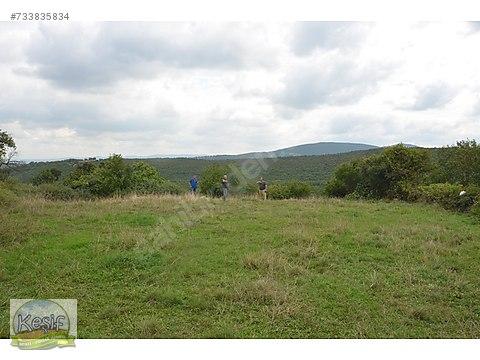 1.480 m2 Köy içinde bahçe.Ev yapımı için uygundur.Gönen...