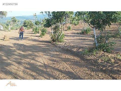 !FIRSAT 300m2 den 60 adet hobi bahçesi yapılabilir...