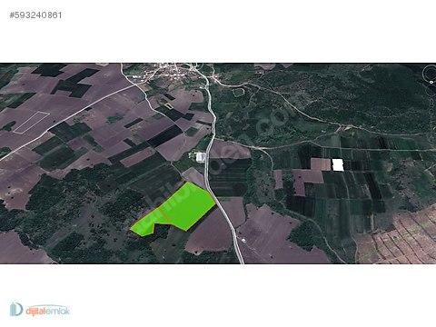 Nilüfer Çatalağıl'da Asfalta Cephe Satılık 41 Dönüm Arazi.