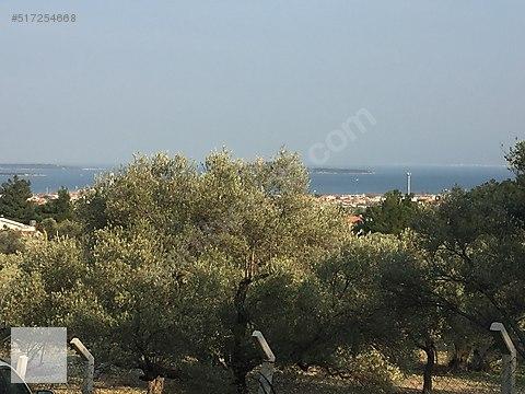 Urla kekliktepede 16750m2 Deniz manzaral arazi-1512