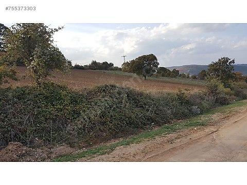 yörükkeçidere köyü 5.000m2 köy yoluna cephe hayvancılığa...
